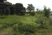 『草刈り』のサムネイル