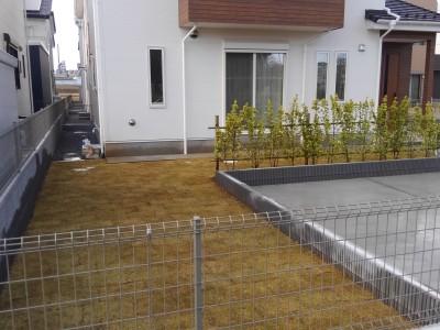 AFTER : 『芝張り、生垣施工 茨城県つくば市』の施行後